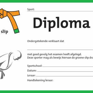Diploma Oranje/Groen
